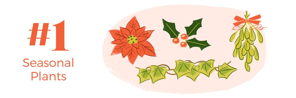 9-holiday-hazards-pets-seasonal-plants