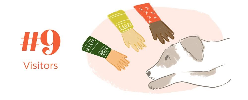 9-holiday-hazards-pets-visitors