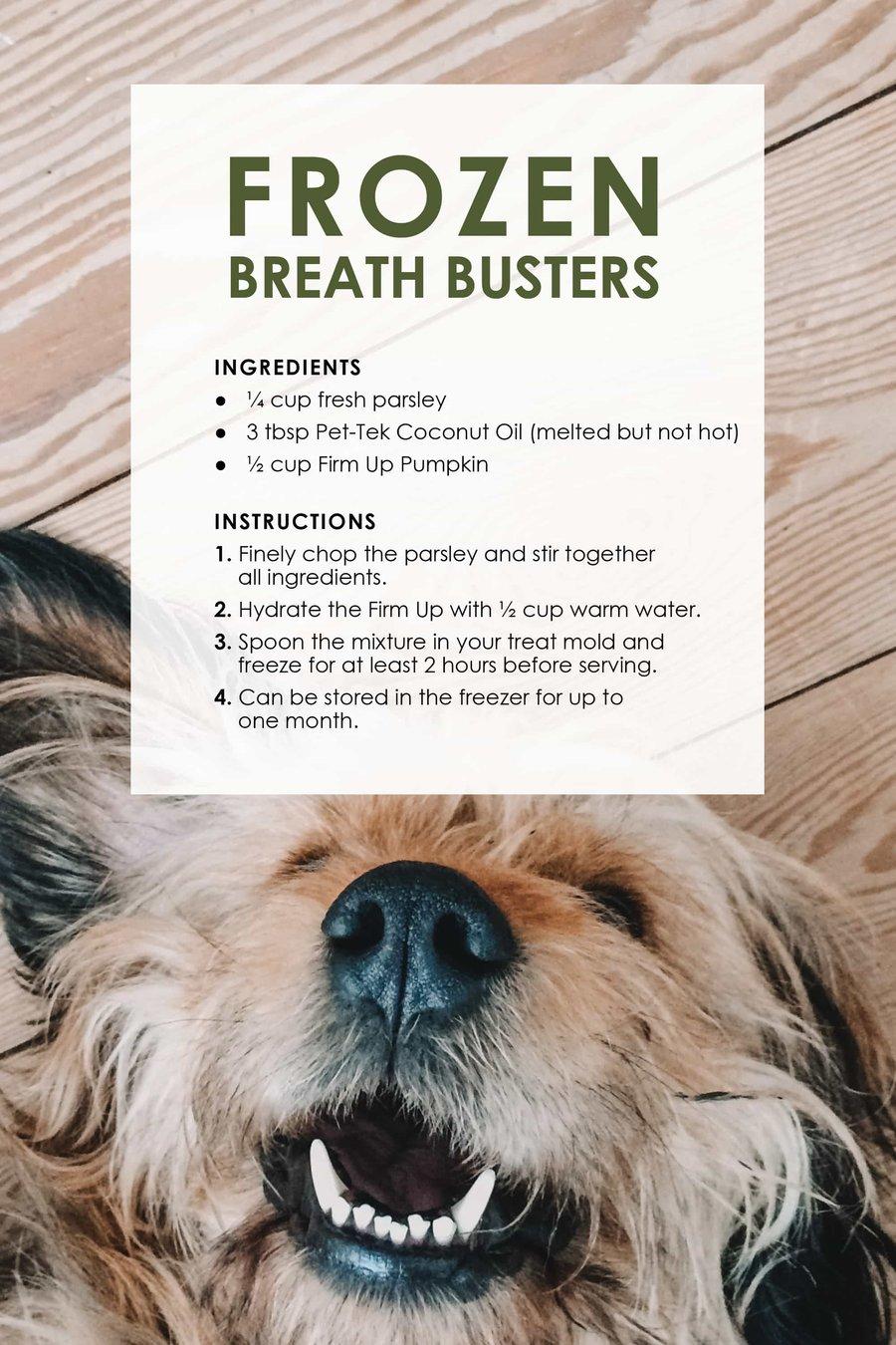 dog_treat_recipes13