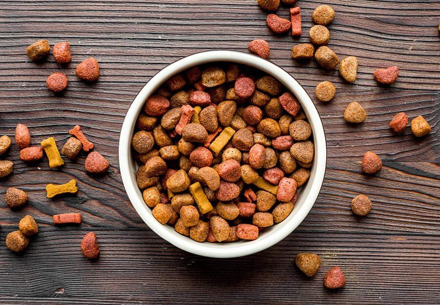 animal-digest-red-flag-ingredients-article-feature