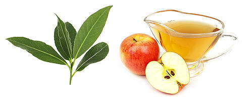 bay-leaves-apple-cider-vinegar