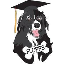 flopps-logo