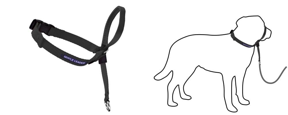 gentle-leader-face-harness