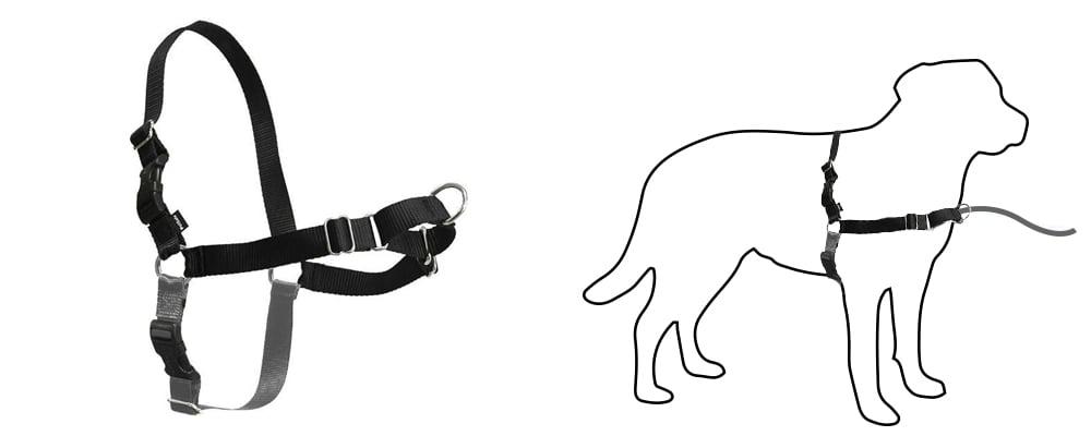 petsafe-front-hook-harness