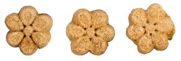 fruitables-biscuit-treat