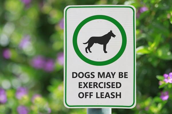Park-Sign-Keep-Dogs-on-Leash-600px