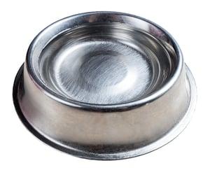 water-bowl2