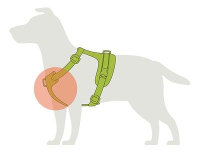 harness-comfort