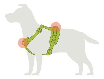 harness-function
