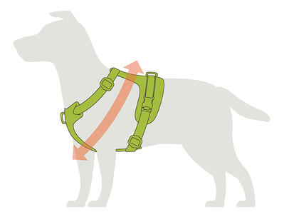 harness-sizing
