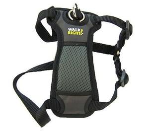 walk-right-harness