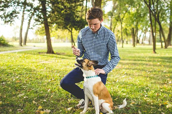 dog-owner-park-people-etiquette