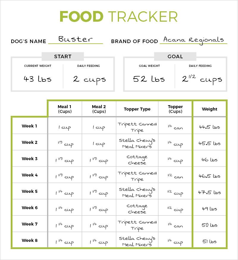 food-tracker2