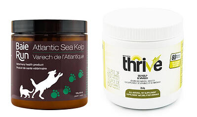 baie-run-thrive-kelp-supplements