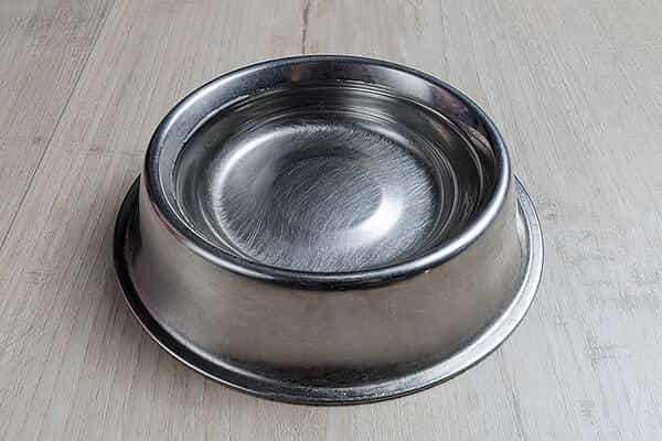 dog-water-bowl