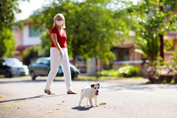 woman walking dog social physical distancing
