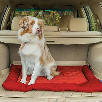 kurgo-loft-wander-dog-bed-medium-vehicle