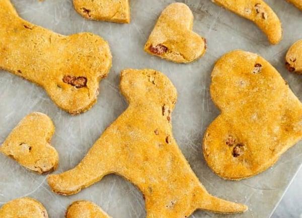 pumpkin-bacon-dog-treats
