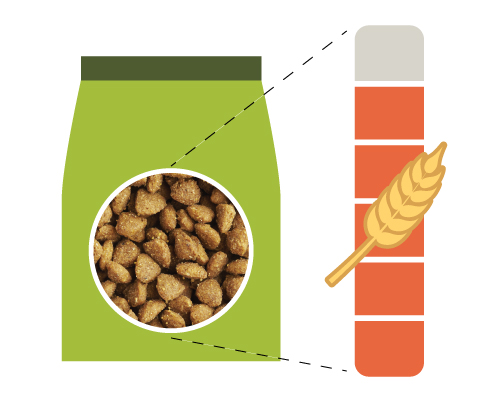 Discovering the Carbohydrate Content of Your Food