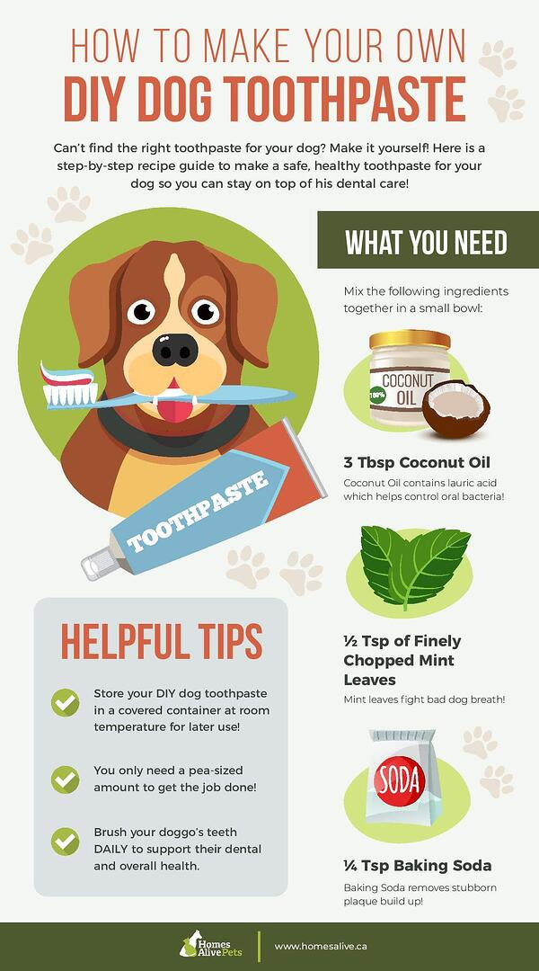 DIY Dog Toothpaste Infographic-page-001