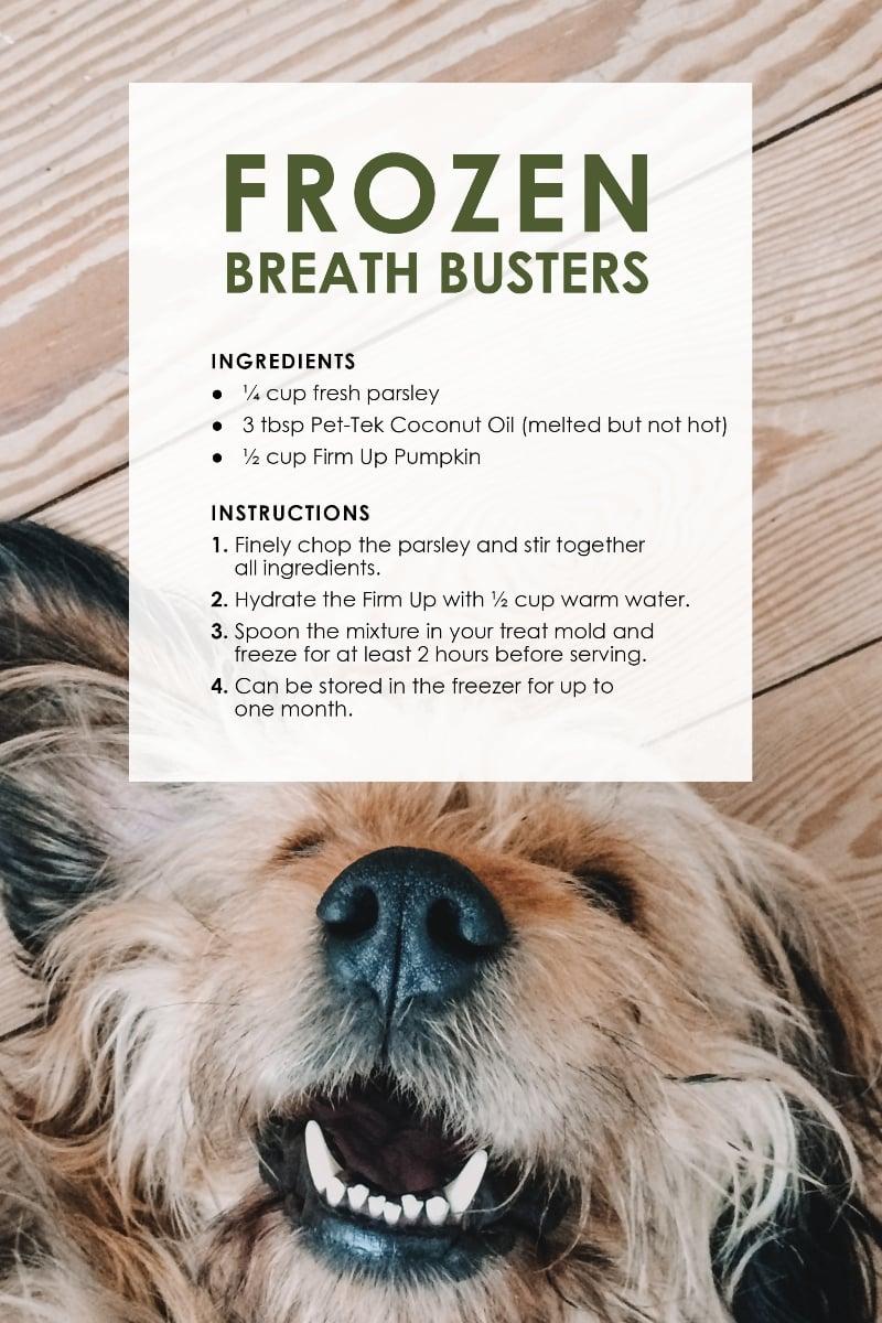 Dog Treat Recipes_BreathS
