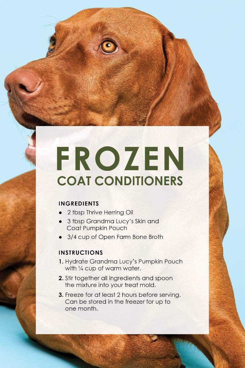 Dog Treat Recipes_CoatS