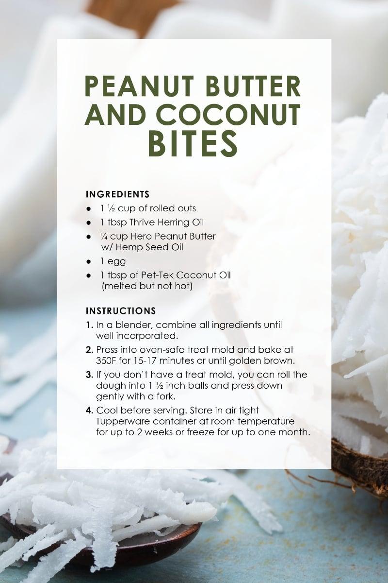Dog Treat Recipes_CoconutS