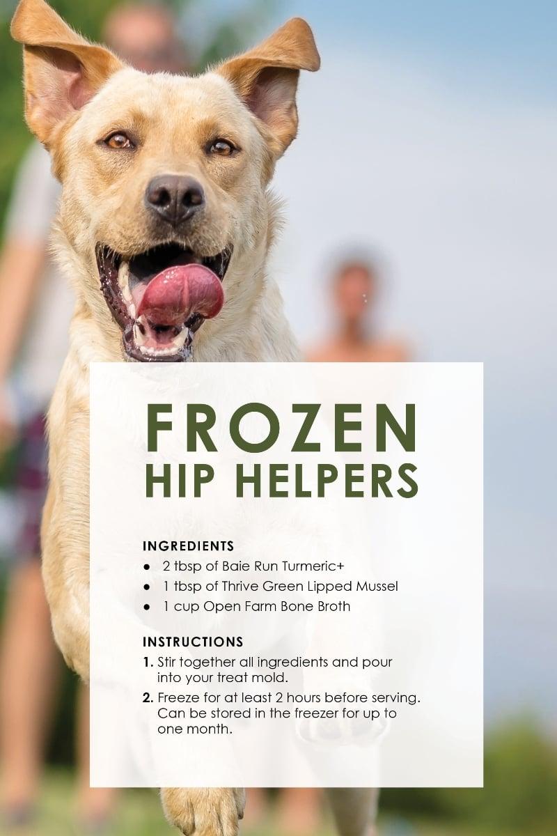 Dog Treat Recipes_HipS