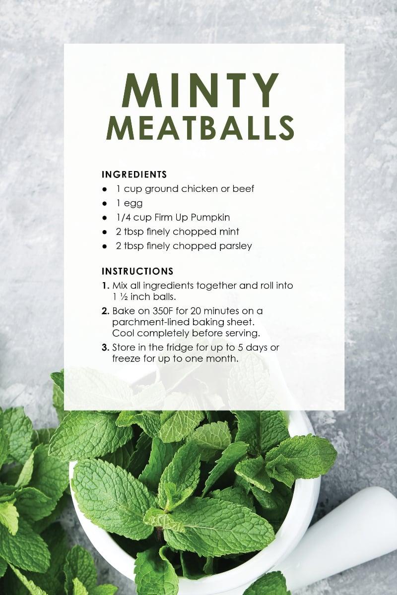 Dog Treat Recipes_MintyS