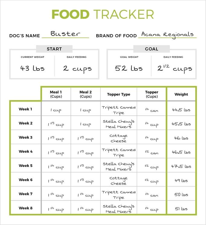 food-tracker3