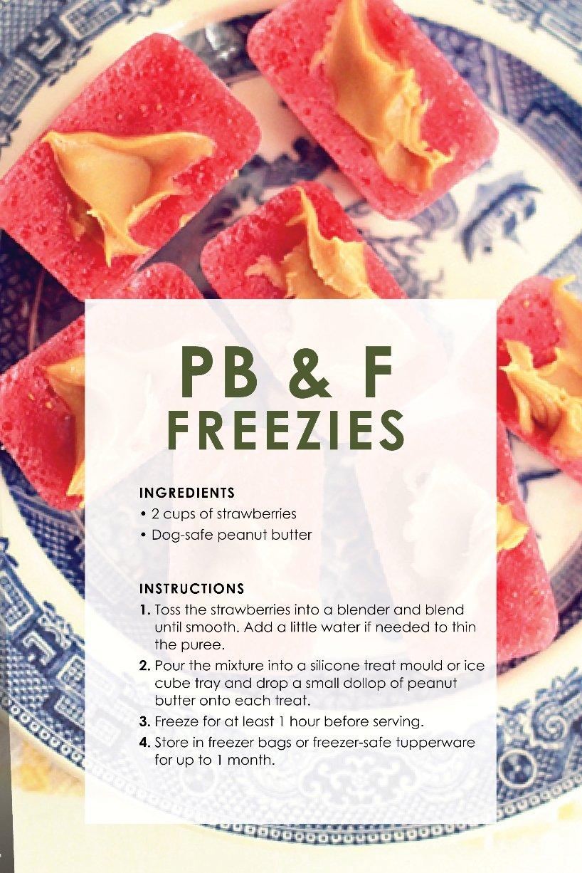 dog_treat_recipes_freezies