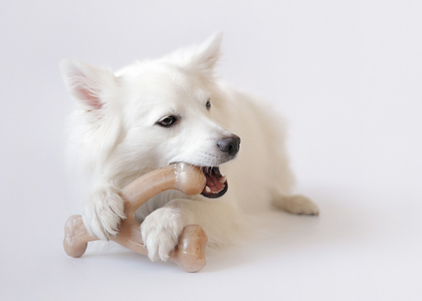 benebone-dental-toy