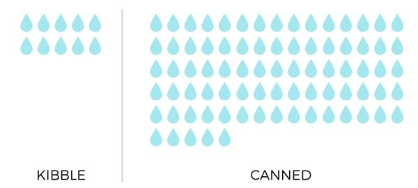 can-kibble-moisture-content