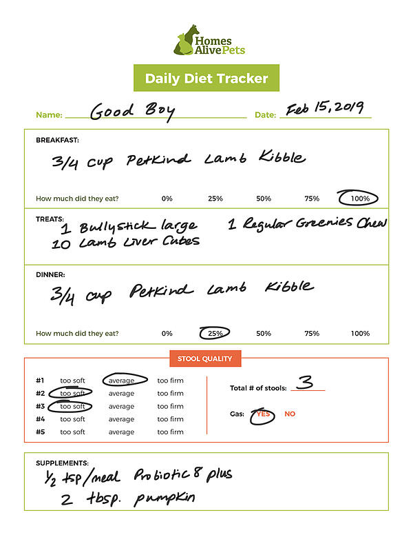 daily-diet-tracker-example