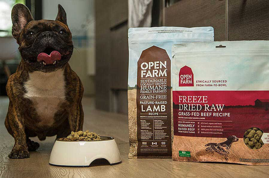 dog with open farm food