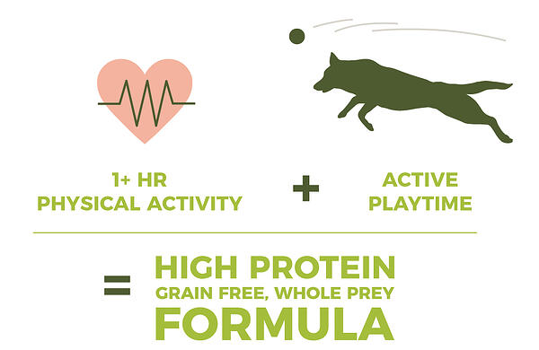 high-activity
