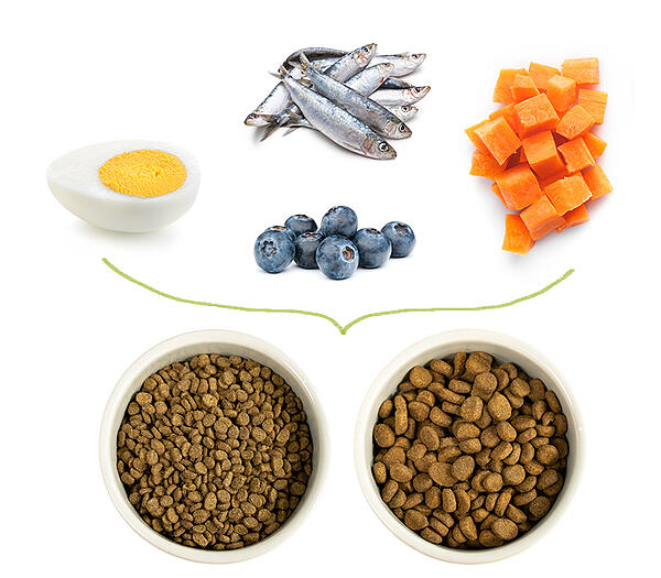 holistic-pet-food-meal-toppers