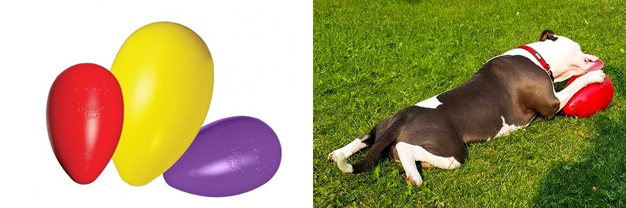 jolly-pets-egg-tough-doy-toys-chewers