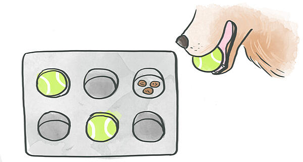 muffin-game-1