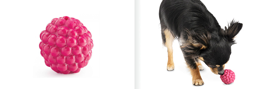planetdog-raspberry