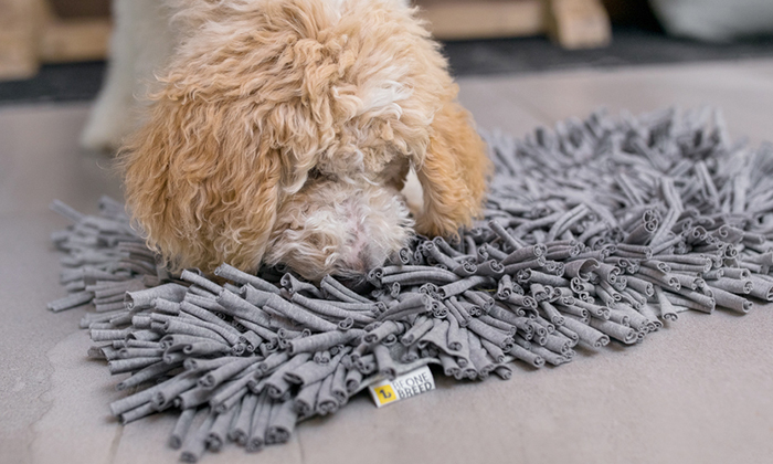 sniff-out-mat-be-one-breed