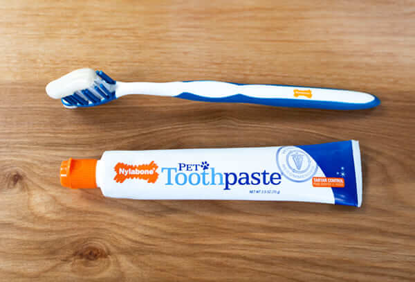 toothpaste-toothbrush