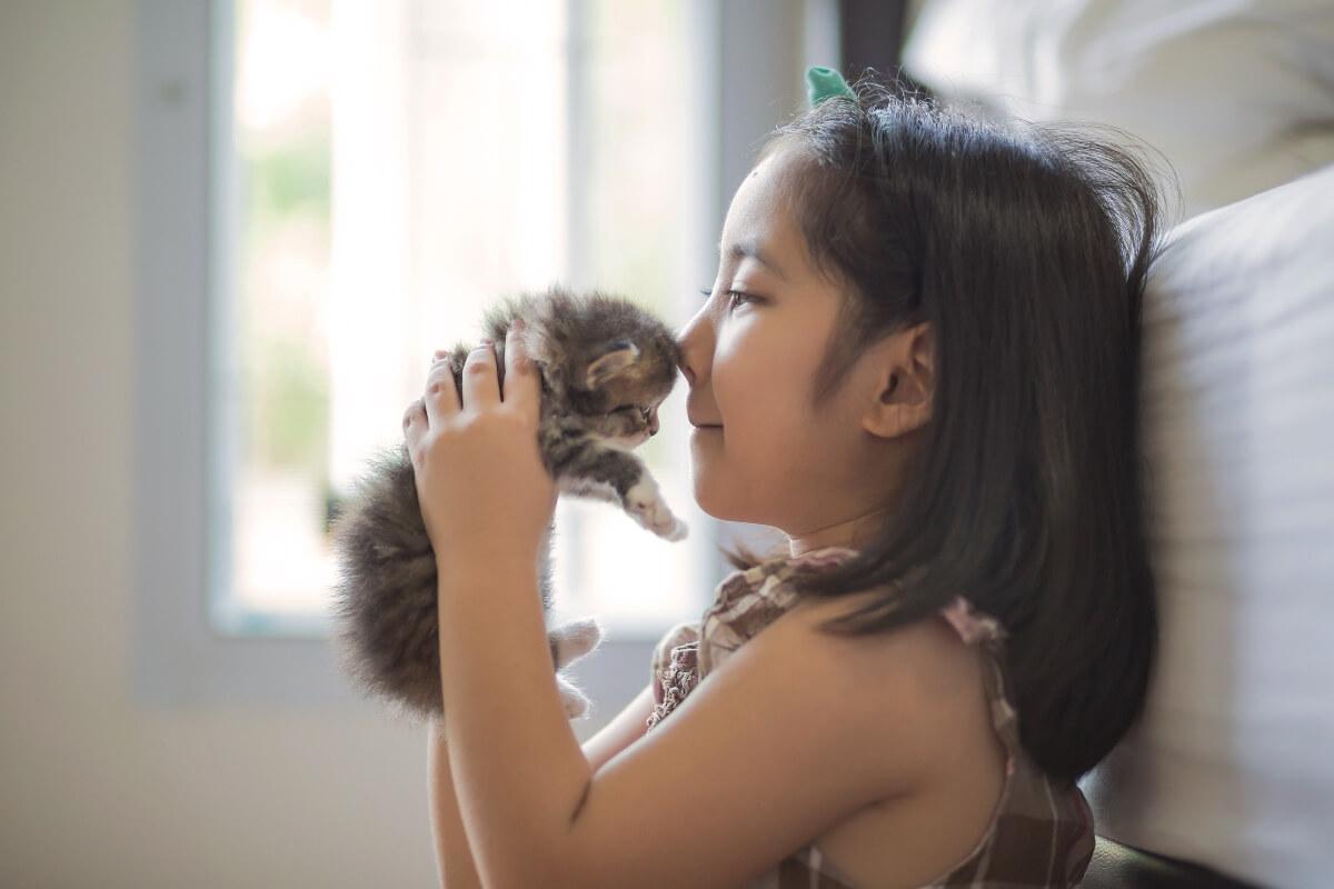 youg-girl-kissing-kitten-on-head