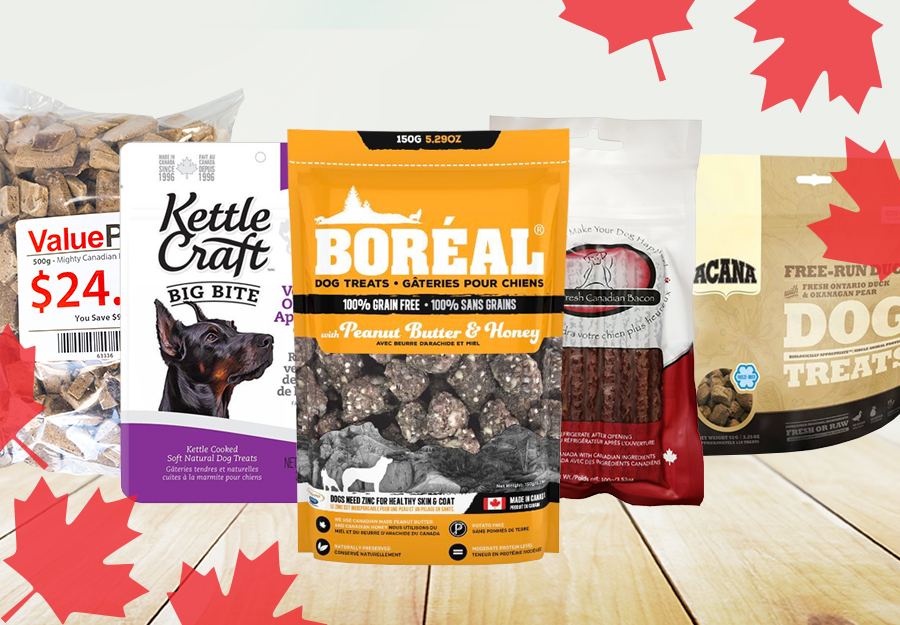 top-15-canadian-dog-treats-article-feature