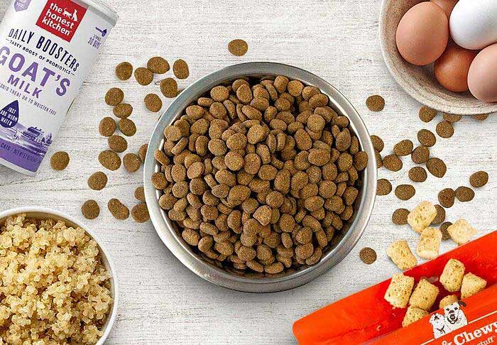 How to Fatten Up A Dog