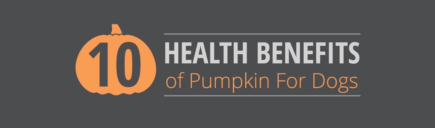 benefits-of-pumpkin
