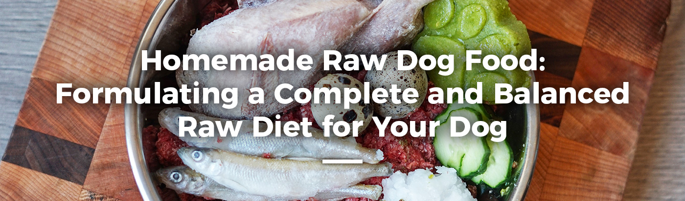 homemade-raw-dog-food-home-feature