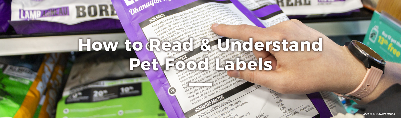 how-to-read-pet-food-labels-home-feature