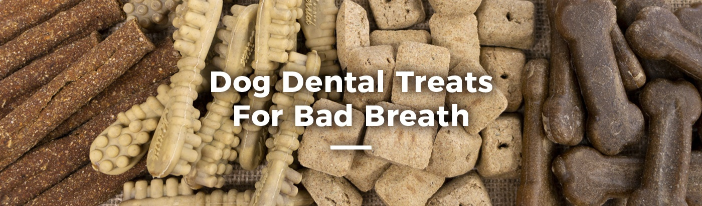 treats-for-bad-breath-home-feature